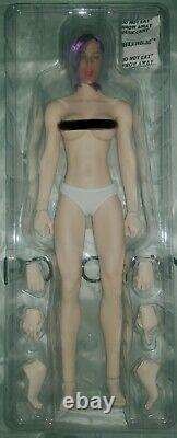 Phicen 1/6 scale 12inch NEW! With two heads & accessories